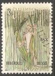 Sellos de Europa - Bélgica -  Pax