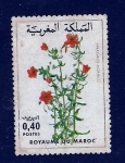 Sellos del Mundo : Africa : Marruecos :  Flor