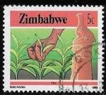 Sellos de Africa - Zimbabwe -  Zimbabwe-cambio