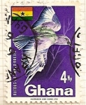 Sellos de Africa - Ghana -  Pajaro