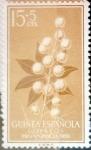 Sellos de Europa - España -  Intercambio fd2a 0,30 usd 15 + 5 cents. 1959