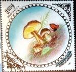 Sellos de Asia - Mongolia -  Intercambio cr2f 0,40 usd 1,20 t. 1985