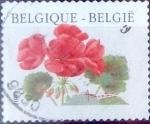 Sellos de Europa - Bélgica -  Intercambio 0,20 usd 17 fr. 1999