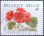 Stamps Belgium -  Intercambio 0,20 usd 17 fr. 1999