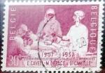 Sellos de Europa - Bélgica -  Intercambio hb1r 0,20 usd 30 cents. 1957