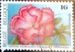 Stamps Belgium -  Intercambio 0,75 usd 16,00 fr. 1995
