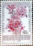 Stamps : Europe : Belgium :  Intercambio m4b 0,20 usd 40 cents. 1960