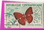 Stamps Africa - Central African Republic -  cymothoe sangaris