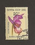 Sellos del Mundo : Europa : Rusia : Orquideas:Calypso bulbosa