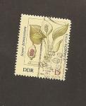 Sellos del Mundo : Europa : Alemania : DDR, Calla palustris