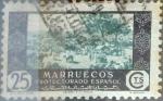 Sellos de Europa - España -  Intercambio 0,20 usd 25 cents. 1948