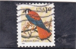 Sellos de America - Estados Unidos -  ave