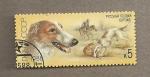 Sellos de Europa - Rusia -  Perro raza borzoi ruso
