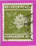 Stamps Asia - Bangladesh -  flor