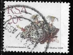 Stamps : Africa : South_Africa :  Sudáfrica-cambio