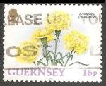 Sellos de Europa - Reino Unido -  Clavel amarillo