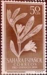 Sellos de Europa - España -  Intercambio 0,35 usd 50 cents. 1956