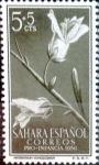 Sellos de Europa - España -  Intercambio 0,20 usd 5 + 5 cents. 1956