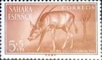 Sellos del Mundo : Europa : España : Intercambio 0,20 usd 5 + 5 cents. 1955