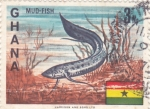 Stamps Ghana -  Mud-fish