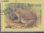 Sellos de Africa - Tanzania -  sapo
