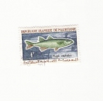 Stamps Africa - Mauritania -  Mugil cephalus