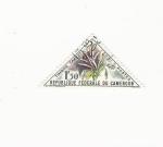 Stamps Cameroon -    GRIMUM SP.