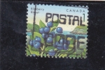 Stamps : America : Canada :  BLUEBERRY