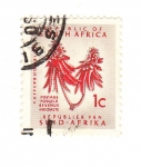 Stamps Africa - South Africa -  Kafferboomblom