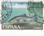 Sellos de Europa - España -  Barbo (26)