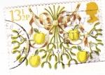 Stamps United Kingdom -  Manzanas