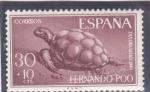 Sellos del Mundo : Europa : España :  Día del sello-tortuga