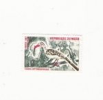 Stamps Africa - Niger -  TOCKUS ERYTHRORHYNCHUS