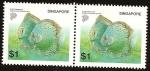 Stamps Asia - Singapore -  Peces - Turquesa Azul - Symphysodon