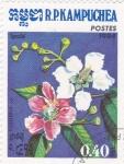 Stamps : Asia : Cambodia :  FLORES-PLUMERIA