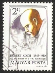 Sellos de Europa - Hungría -  Robert Koch