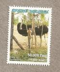 Stamps Africa - Madagascar -  Fauna malgache