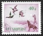 de Europa - Albania -  812 - Caza de patos