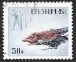 Sellos de Europa - Albania -  813 - Caza del jabalí