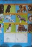 Sellos del Mundo : America : Argentina : Razas de Perros