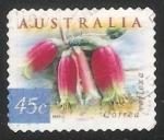 Stamps Australia -  COrrea reflexa