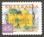 Sellos de Oceania - Australia -   Hibbertia Scandens