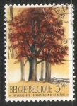 Sellos de Europa - Bélgica -  Año europeo de la conservacion de la naturaleza