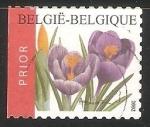Sellos de Europa - Bélgica -  Azafranes