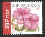 Sellos de Europa - Bélgica -  Clavel rojo