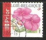 Sellos del Mundo : Europa : Bélgica :  Clavel rojo