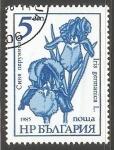 Stamps Bulgaria -  Iris germanica