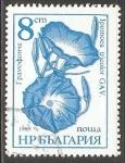 Sellos de Europa - Bulgaria -  ipomoea tricolor