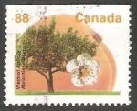 Sellos de America - Canadá -  albaricoque