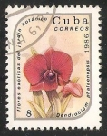 Sellos de America - Cuba -  Dendrobium phalaenopsis